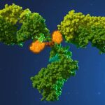 Characterization of Antibody Drug Conjugates (ADCs)